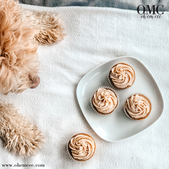 Homemade pumpkin spice cupcakes with Riply the puppy