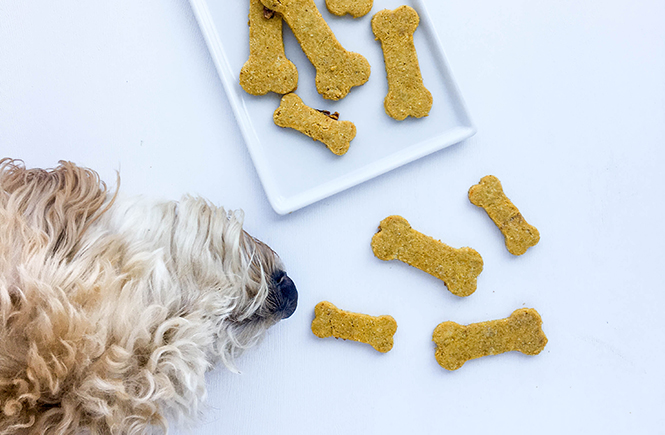 Homemade Grain-Free Bacon Dog Treat